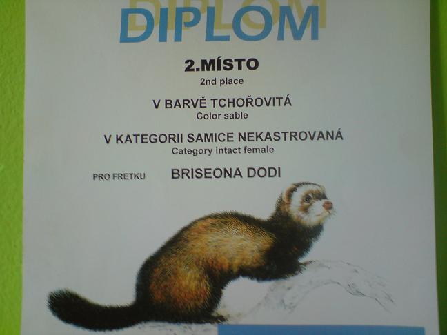 Diplom z Brna (3).jpg
